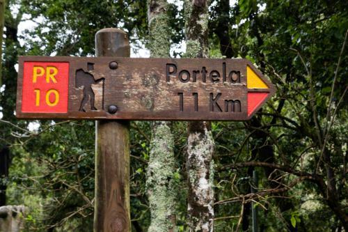 Op weg naar Portela via de Levada do Furado