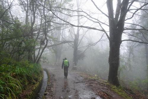 Wandeling van Casa de Queimadas naar Caldeirao Verde