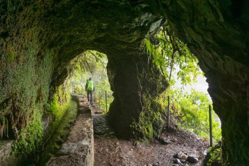 Tunnel tijdens wandeling van Casa de Queimadas naar Caldeirao Verde