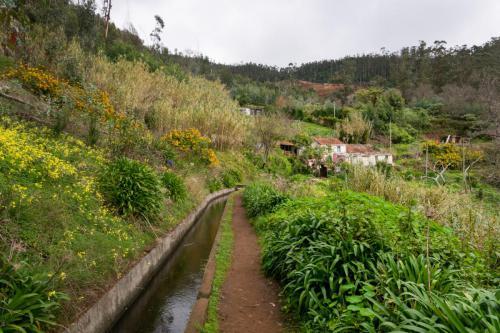 Langs de Levada dos Tornos richting Camacha